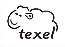 Schaapjes sticker Texel