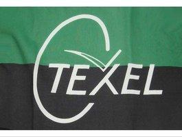 Texel gevelvlag