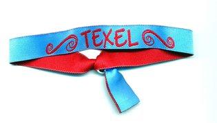 Festival bandje Texel